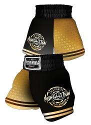 Muay Thai Shorts GOLD