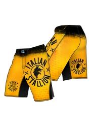 Fight Shorts ROCKY